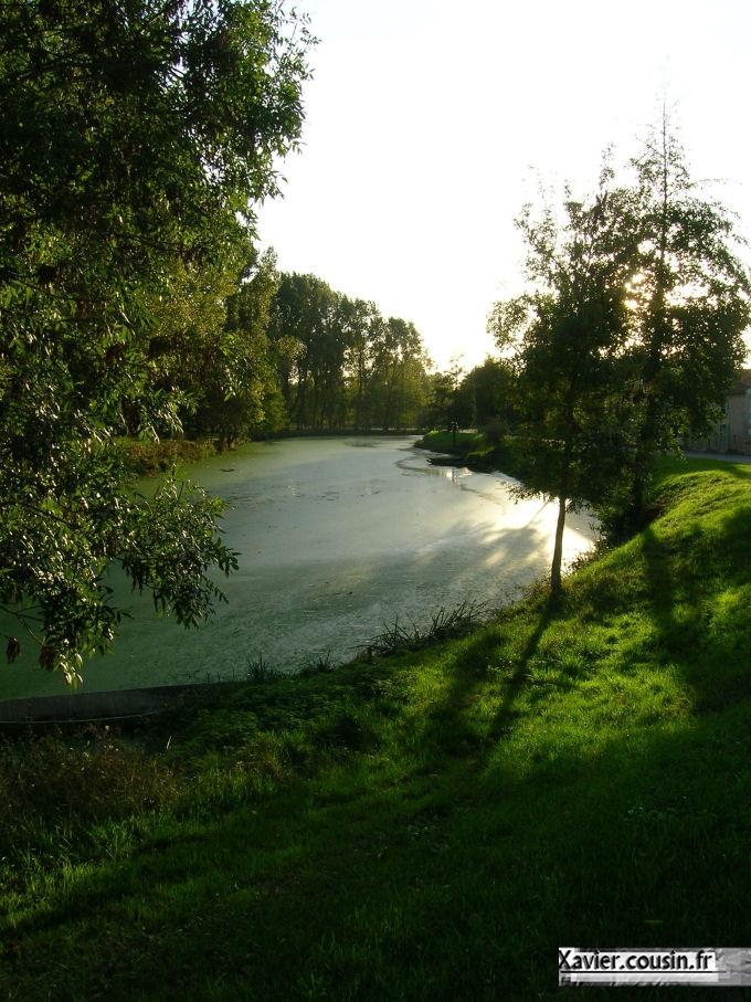 Marais1